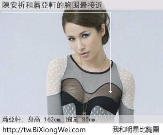 陳安祈和明星比胸圍的結果