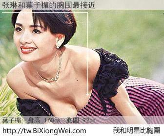 张琳和明星比胸圍的結果