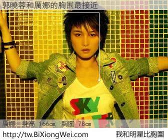 郭曉蓉和明星比胸圍的結果