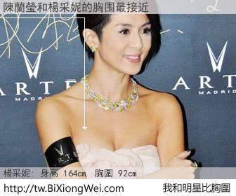 陳蘭瑩和明星比胸圍的結果